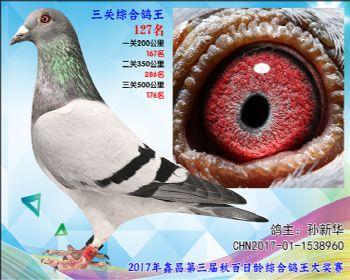 127 孙新华超级飞乐参考雌