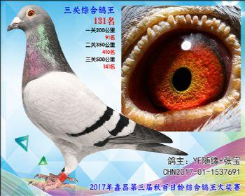 131  YF随缘+张宝速霸龙参考雄