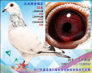 53 雪中贵族(詹吉X詹森凡龙)参考雄