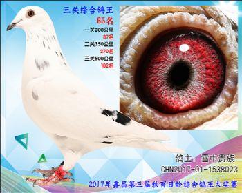 65 雪中贵族(詹吉X詹森凡龙)参考雄