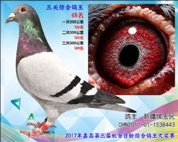 48 新疆侯玉民参考雄