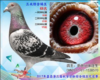68 新世纪张连生参考雄