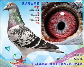 72 孙新华超级飞乐参考雄