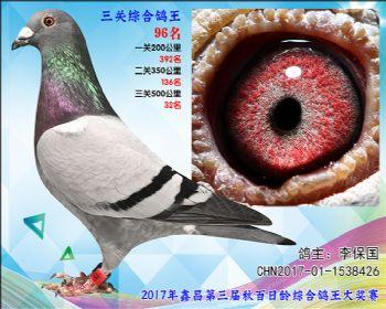 96 李保国卡普詹森参考雄