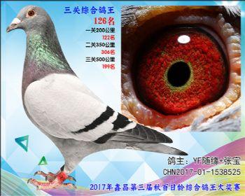 126 YF随缘+张宝速霸龙参考雄