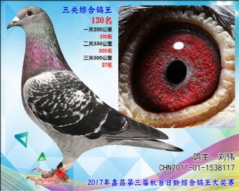 130 刘伟乔司佛卡门雄