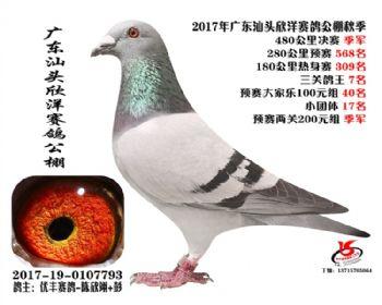 广东欣洋决赛季军