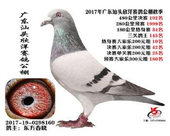 广东欣洋决赛102名