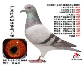 广东欣洋决赛101名