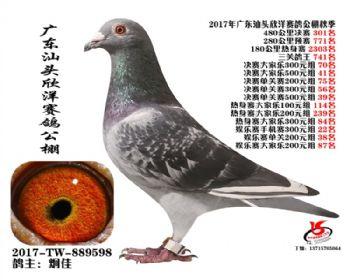 广东欣洋决赛301名