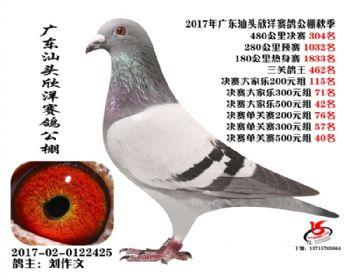 广东欣洋决赛304名