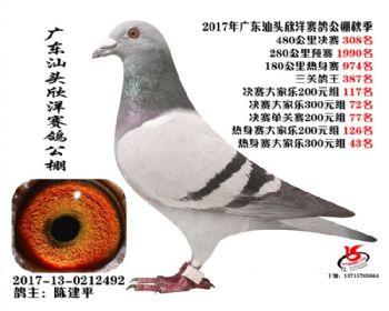 广东欣洋决赛308名