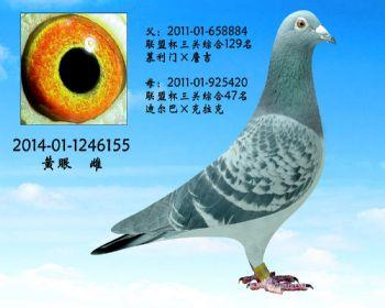 24.幕利门x克拉克.1246155