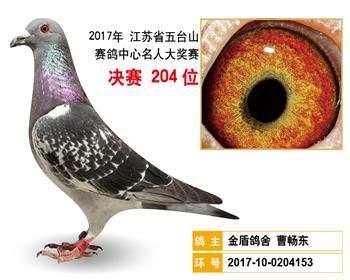 江苏五台山决赛204名