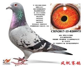 7-(欧洲之王X凡戴克)