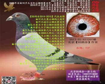 北京05鸽舍VIP