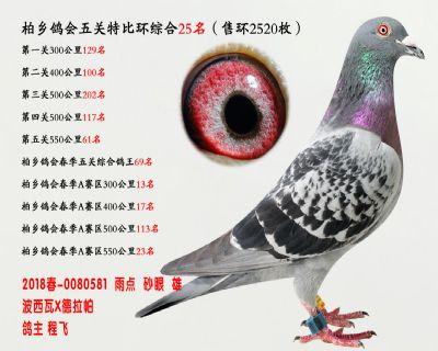 五关综合鸽王25名