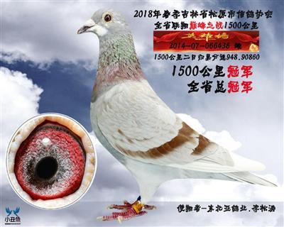 李松涛1500公里冠军