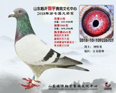山东翔宇决赛13名