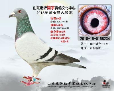 山东翔宇决赛19名