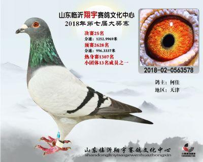 山东翔宇决赛25名