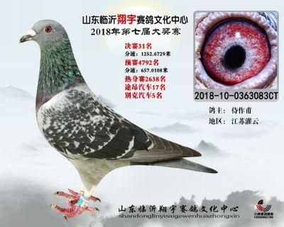 山东翔宇决赛31名
