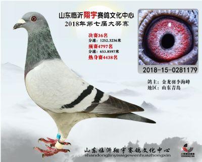 山东翔宇决赛36名