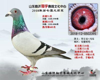 山东翔宇决赛71名