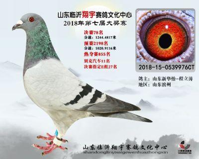 山东翔宇决赛78名