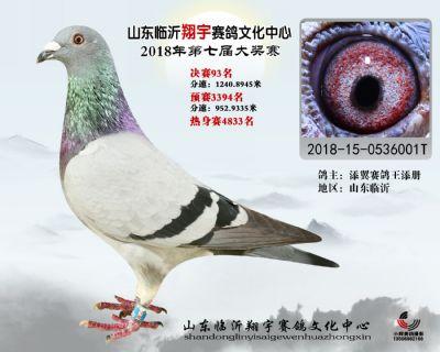 山东翔宇决赛93名