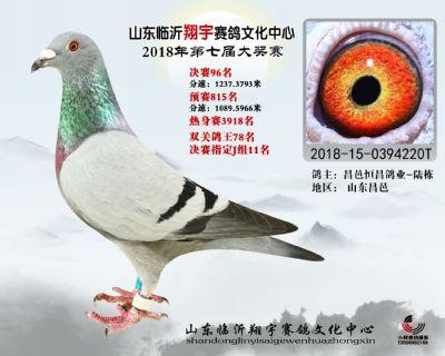 山东翔宇决赛96名