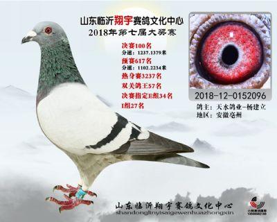 山东翔宇决赛100名