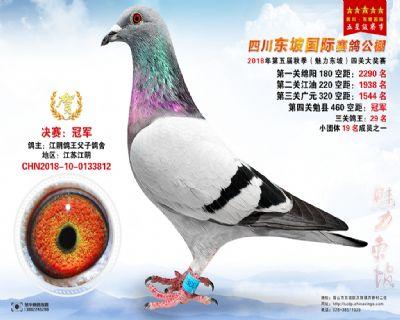 四川东坡决赛冠军