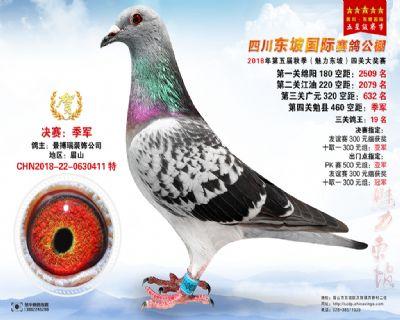 四川东坡决赛季军