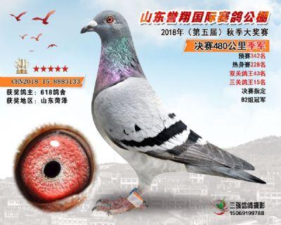 山东誉翔决赛季军