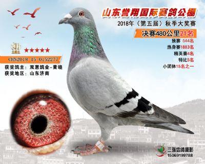 山东誉翔决赛21名