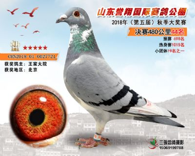 山东誉翔决赛44名