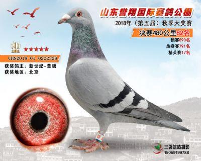 山东誉翔决赛82名