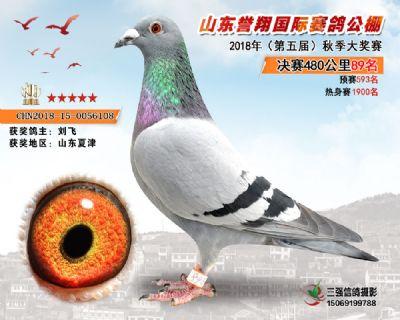 山东誉翔决赛89名