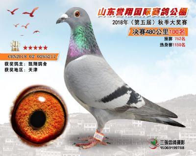 山东誉翔决赛100名