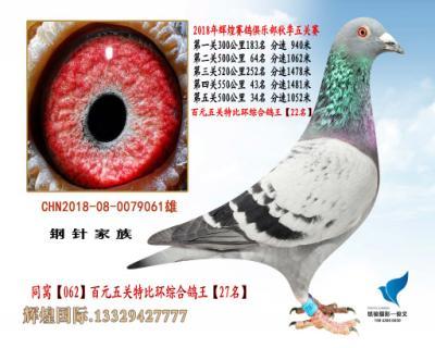 五关综合鸽王【22名】