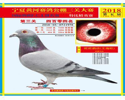 宁夏黄河决赛404名