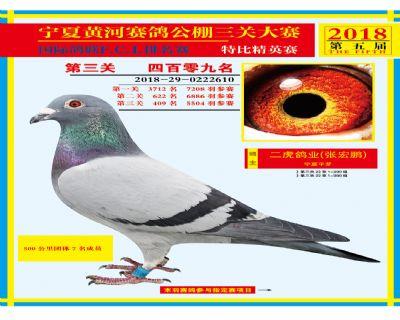 宁夏黄河决赛409名