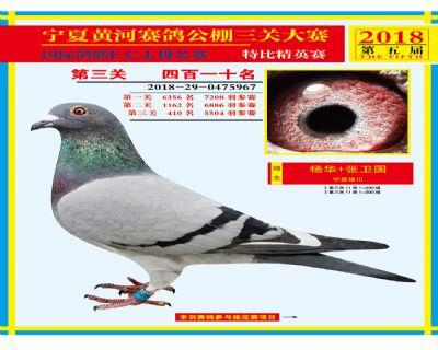 宁夏黄河决赛410名