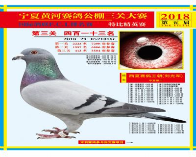 宁夏黄河决赛413名