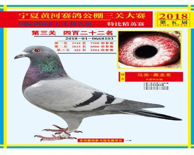 宁夏黄河决赛422名