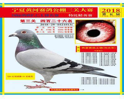 宁夏黄河决赛426名
