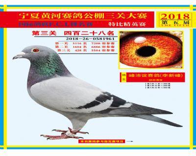 宁夏黄河决赛428名