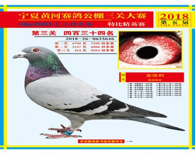 宁夏黄河决赛434名