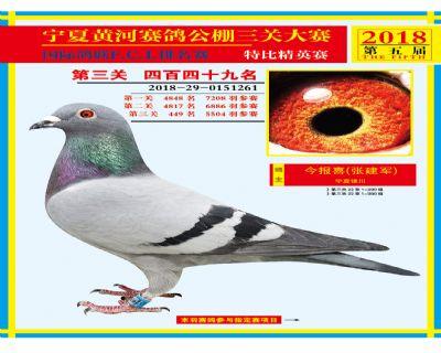 宁夏黄河决赛449名